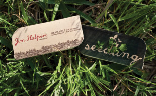 Unique and Creative Business Card - Seedling