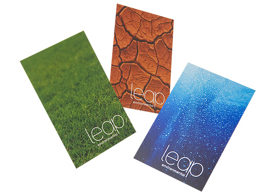 Colorful business cards leap environmental cardrabbit colorful business cards leap environmental colourmoves Images