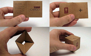 Unique Business Card – Tam Cargo