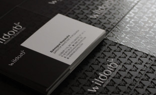 Cool Spot UV Business Card - WildOrb