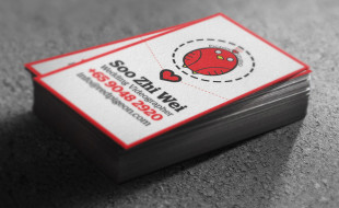 Cool Business Card - Red Pigeon Studio
