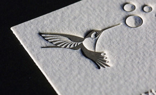 Amazing Letterpress Business Card – Hummingbird