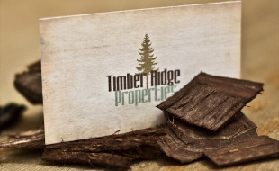 Unique Business Card – Timber Ridge Properties