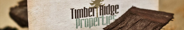 Unique Business Card - Timber Ridge Properties