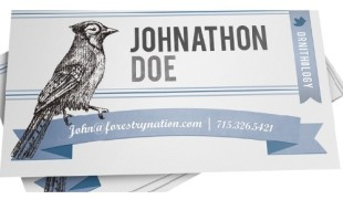 Blue Jay Business Cards - Printplace