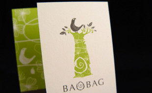 Creative Business Card - BaoBag