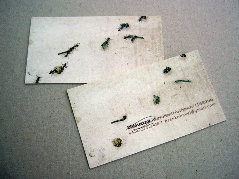 Creative Business Cards - Disinsectant - Ants