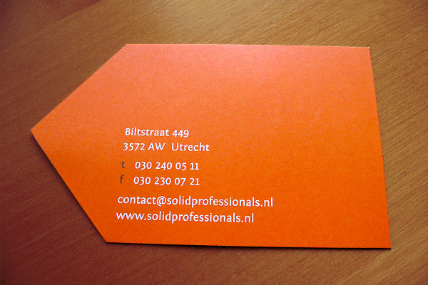 Die-Cut Business Card - Solid Professionals2